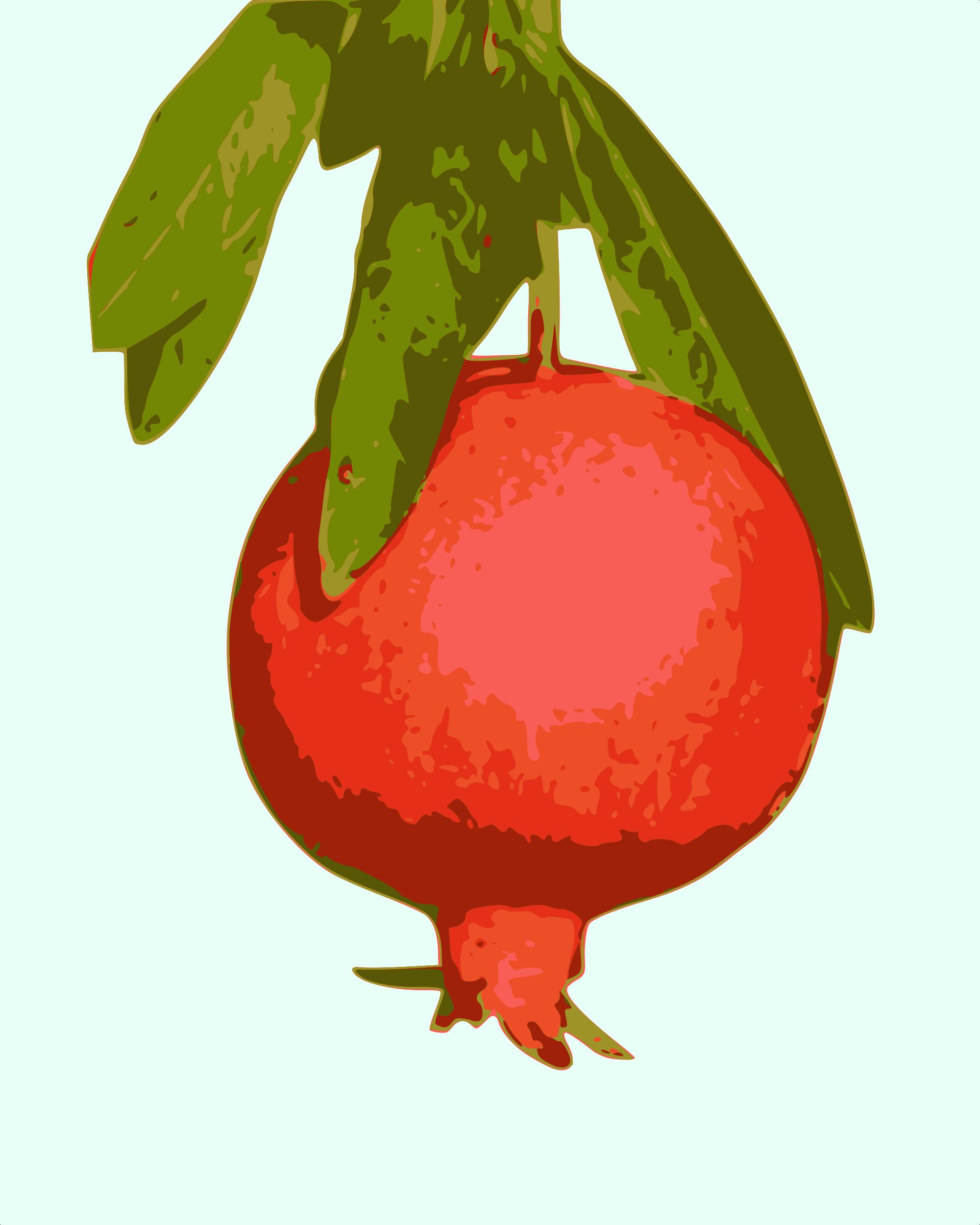 File svg wikimedia commons. Pomegranate clipart vector