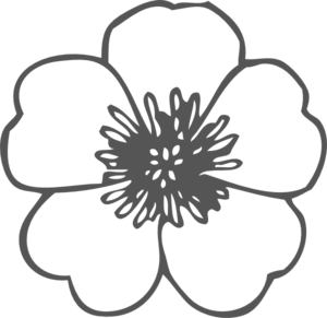 Poppy Clip Art at Clker.com - vector clip art online, royalty free ...