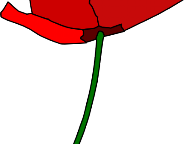 Cartoon png download . Poppy clipart 4 flower