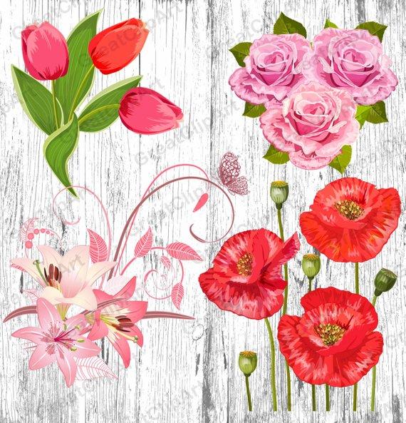 flowers set bouquet. Poppy clipart 4 flower