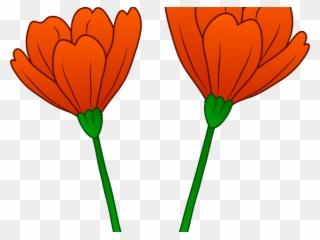 Poppy clipart 4 flower. Free png clip art