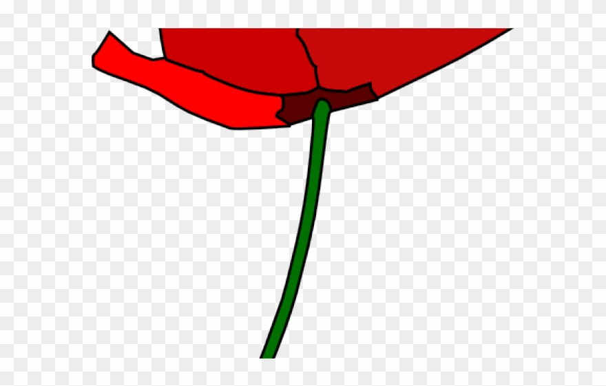 Poppy clipart 4 flower. Cartoon png download