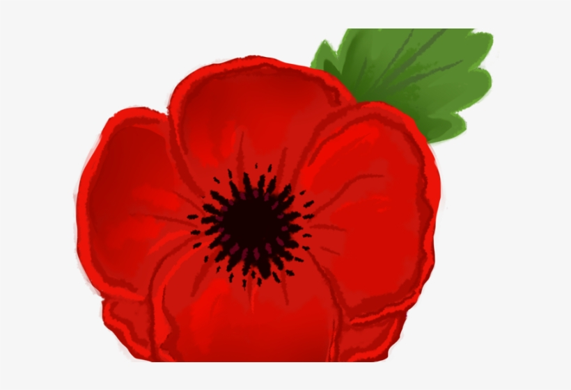 Clip art remembrance day. Poppy clipart animated