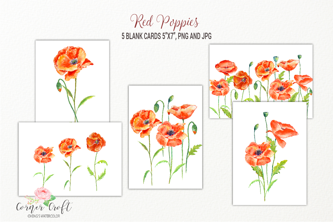 Watercolor red and card. Poppy clipart blank