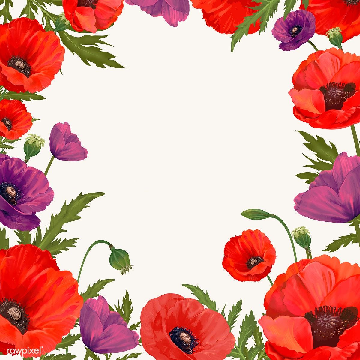 Poppy clipart blank. Framed background free stock