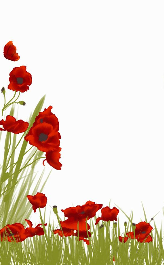 Poppy clipart border paper. Pin on stationery