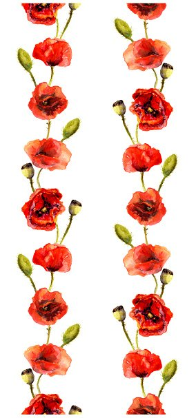 Watercolor with poppies premium. Poppy clipart border