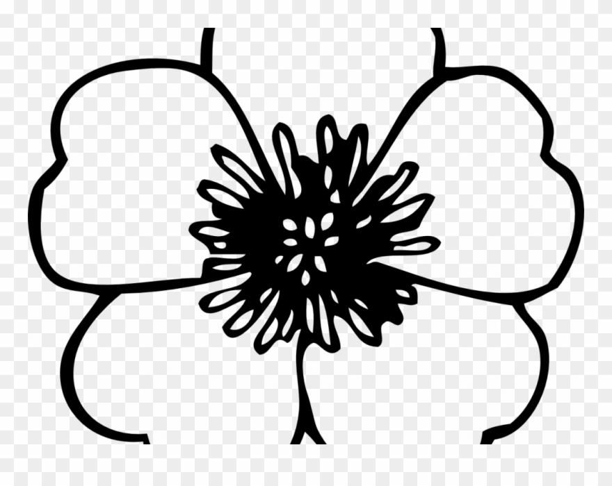 Poppy clipart color. Free black and white