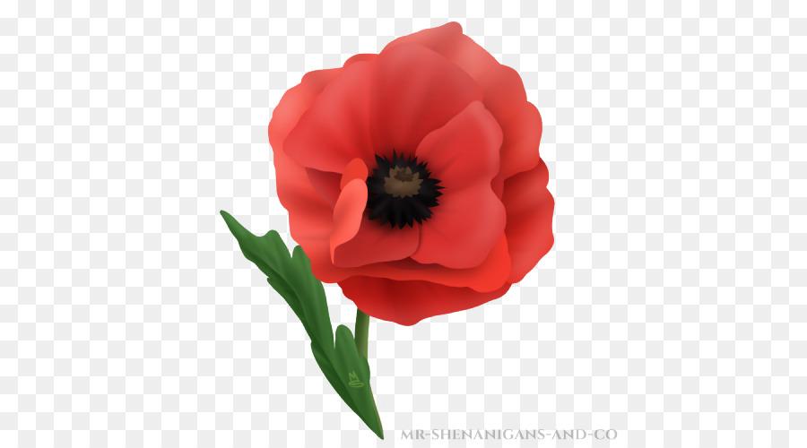 Flower png download free. Poppy clipart flanders field