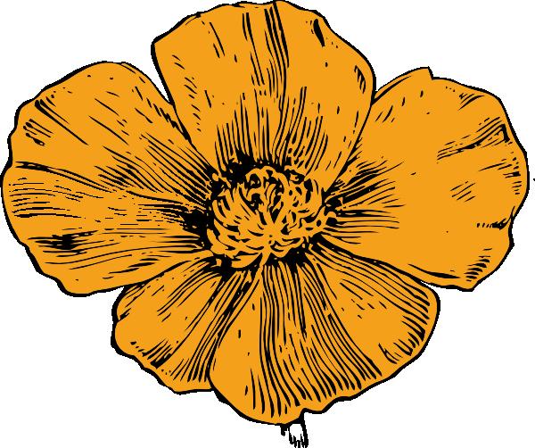 Poppy clipart golden poppy. California clip art vector