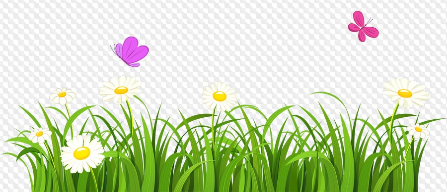 png with flowers. Poppy clipart green grass flower