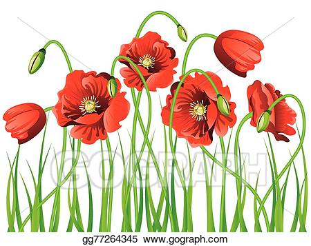 Poppy clipart green grass flower. Eps vector with stock