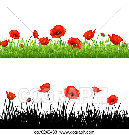 Stock border with grass. Poppy clipart illustration