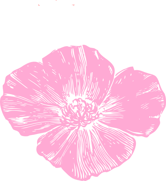 Poppy clipart large. Pink clip art at