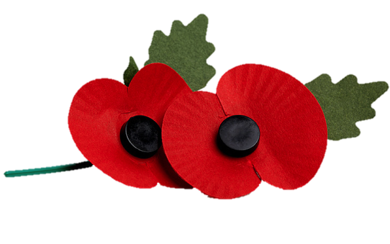 Remembrance pinhead tactical. Poppy clipart lest we forget