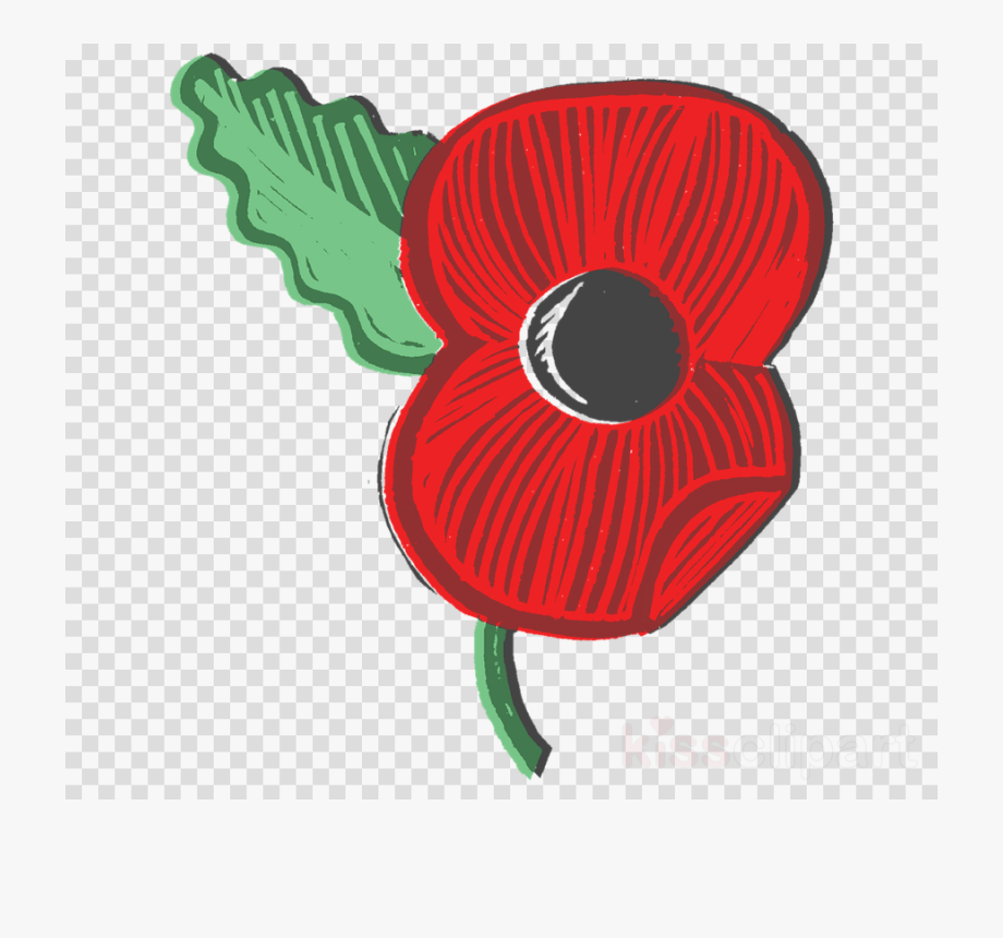 Remembrance single red blood. Poppy clipart memorial day