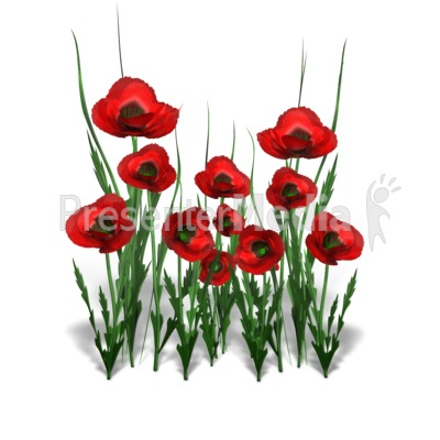 Poppy clipart nature. Flower bunch wildlife and