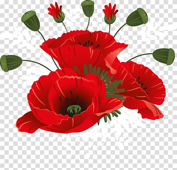 Poppy clipart never forget. Remembrance transparent background png