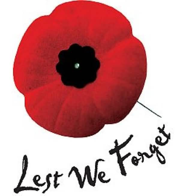 Poppy clipart never forget.  best remembrance day