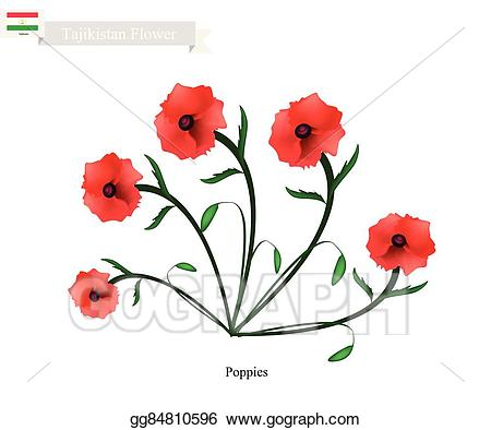 Vector art red poppies. Poppy clipart one
