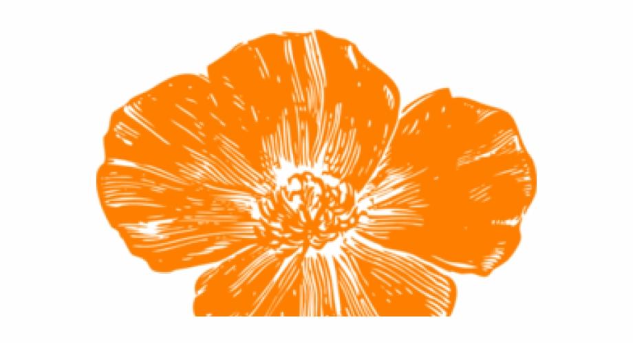 Poppy clipart orange poppy. Hot pink flowers clip