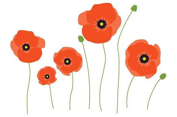 X free clip art. Poppy clipart orange poppy