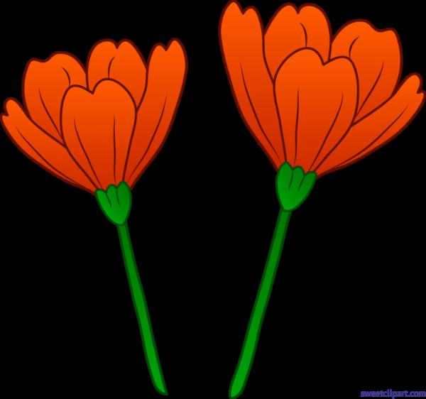 Sweet clip art page. Poppy clipart orange tulip