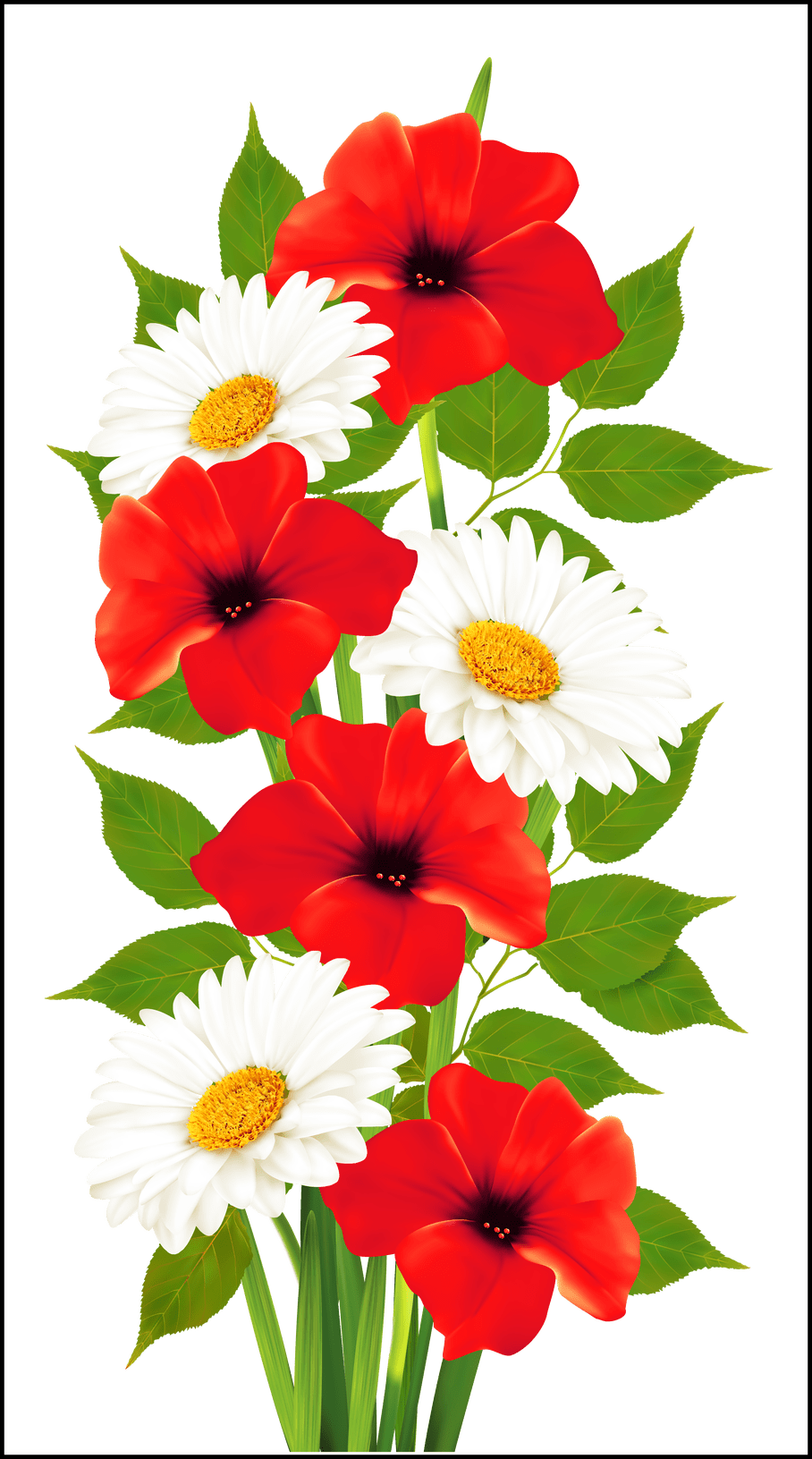Poppy clipart poppy appeal. Stunning poppies and daisies