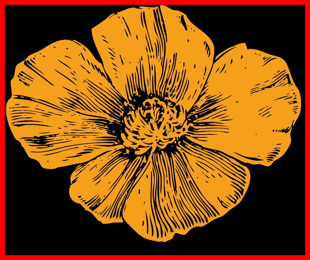 Poppy clipart poppy appeal.  ideas of flower