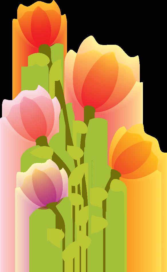Flores Ilustraciones en PNG para Artesan