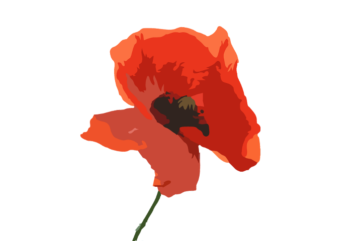 Poppy clipart poppy field. Popular and trending stickers