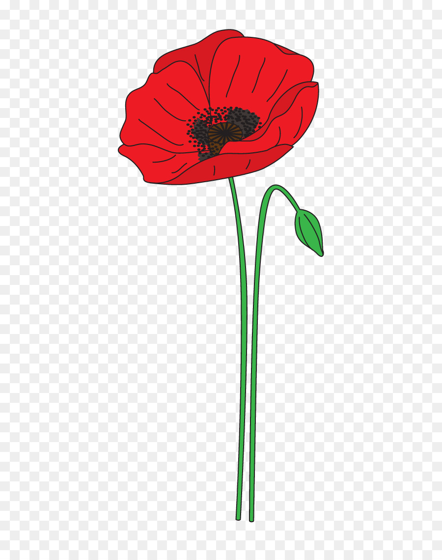 Remembrance day transparent . Poppy clipart poppy flower