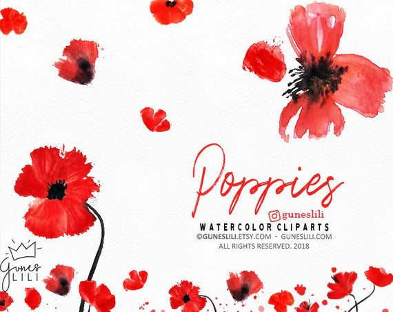 Watercolor red floral flowers. Poppy clipart poppy wreath