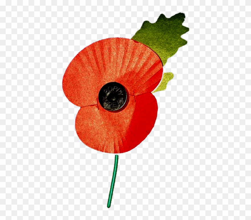 Poppy clipart remembrance day. Parade service british