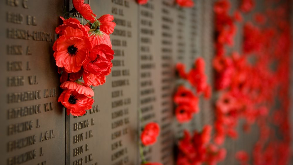 Red honours our dead. Poppy clipart row poppy