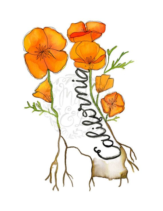 Download tattoo . Poppy clipart state california flower