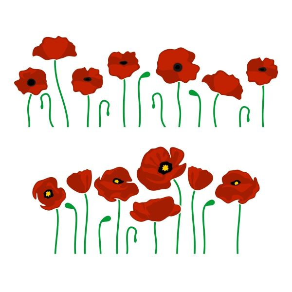 Pin by cuttabledesigns on. Poppy clipart svg