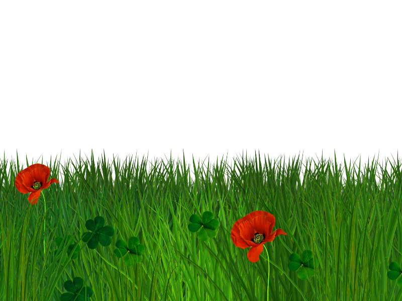 Poppy clipart transparent background. Border grass seamless free