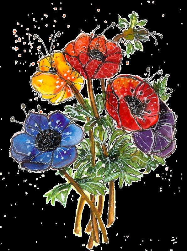 Poppy clipart watercolor. Fleurs flores flowers bloemen