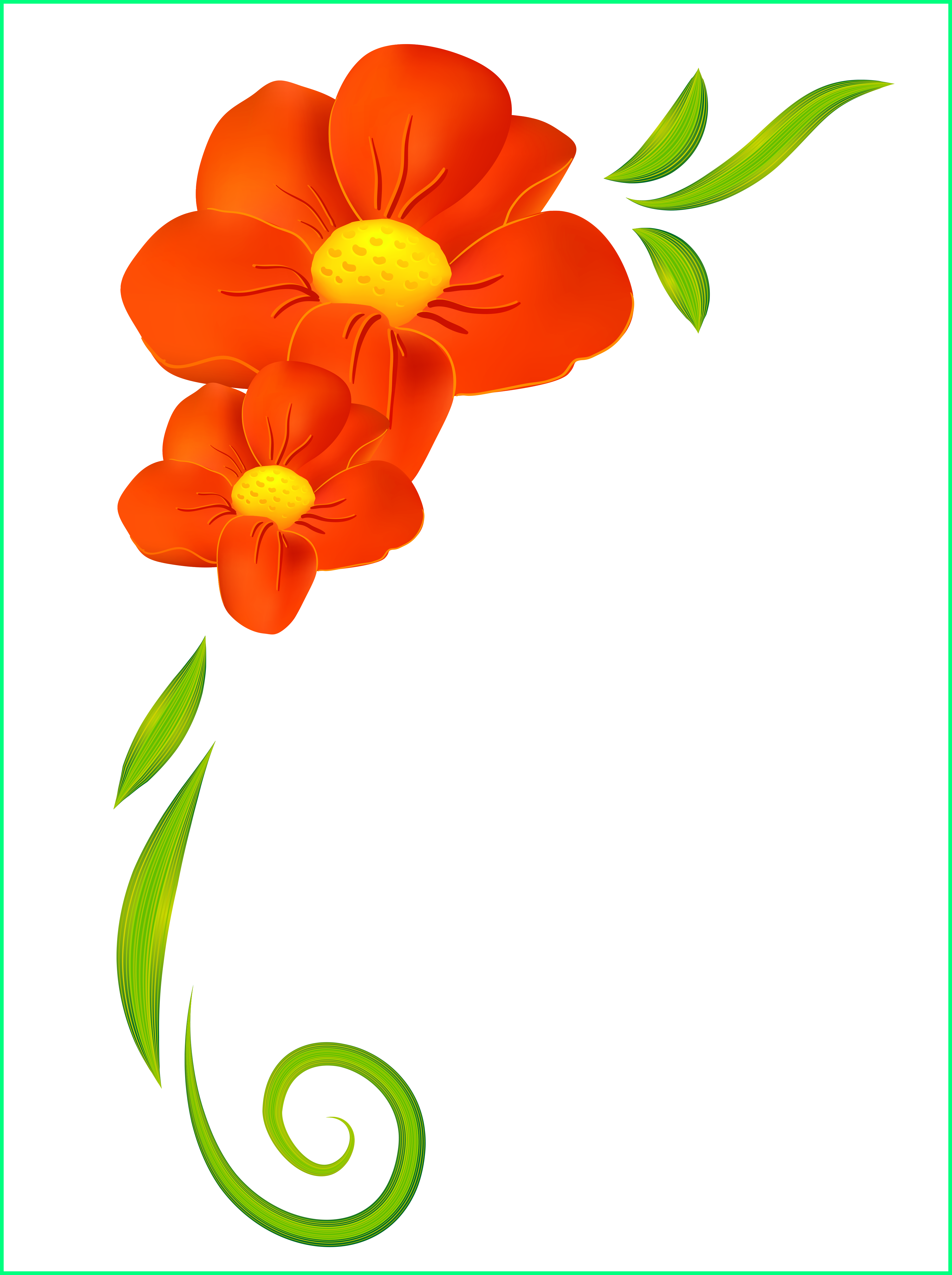Beautiful flower www buysell. Poppy clipart wizard oz