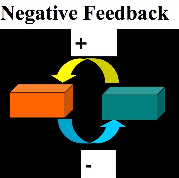 Biology essay on mechanisms. Positive clipart feedback