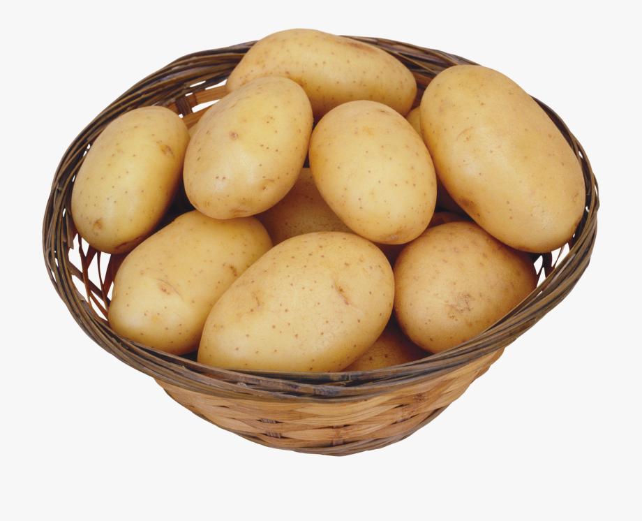 Images cliparts free . Potato clipart clip art