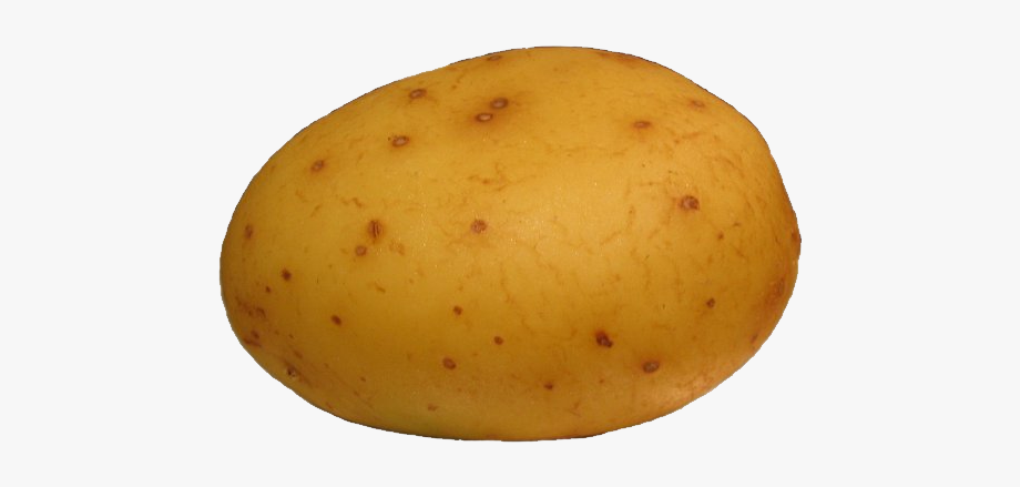 Potato clipart free cartoon. Png cliparts on