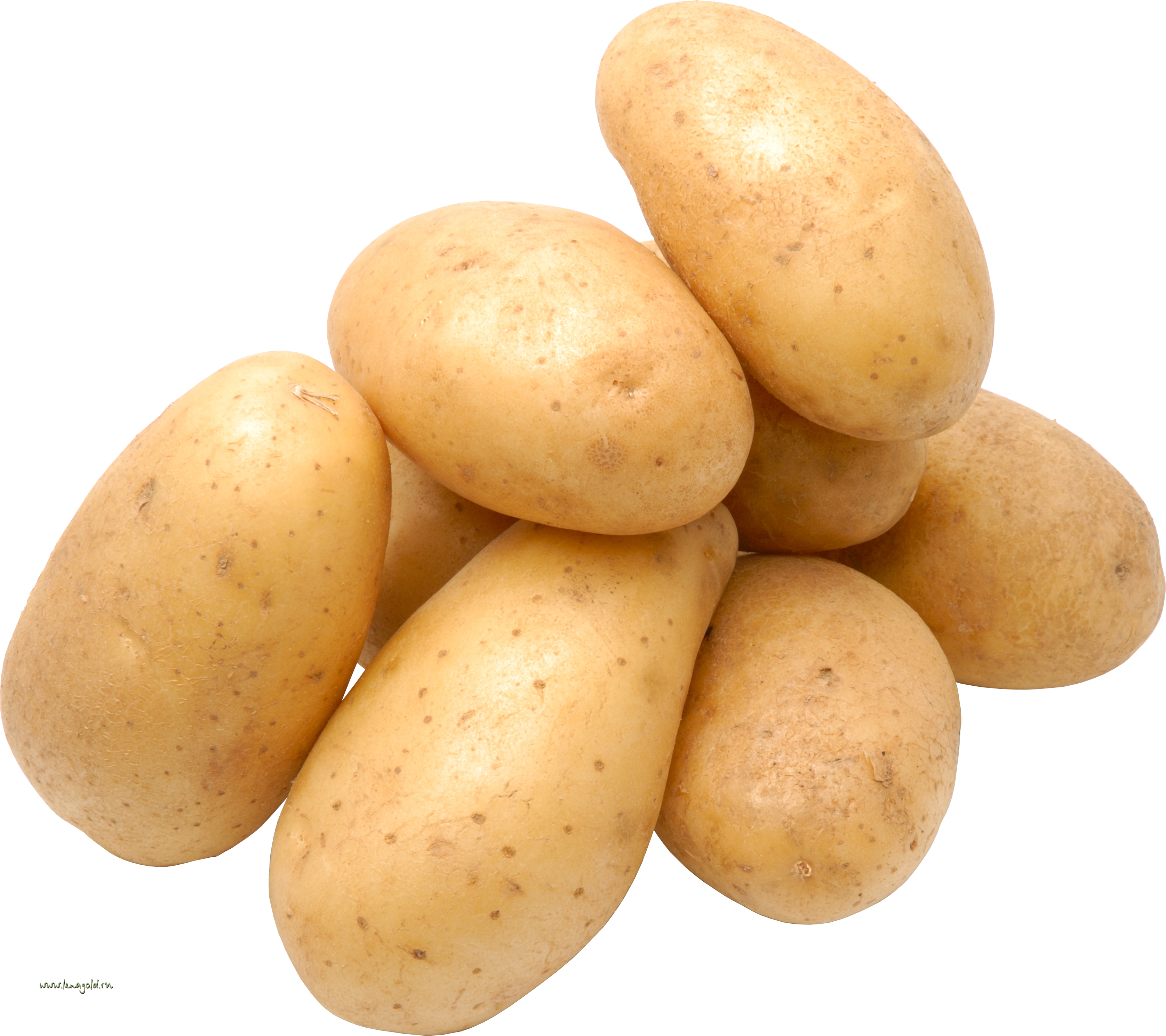Png image purepng free. Potato clipart high resolution
