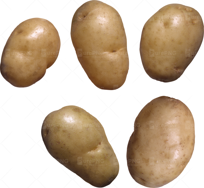Potato clipart markies. Brown free on dumielauxepices