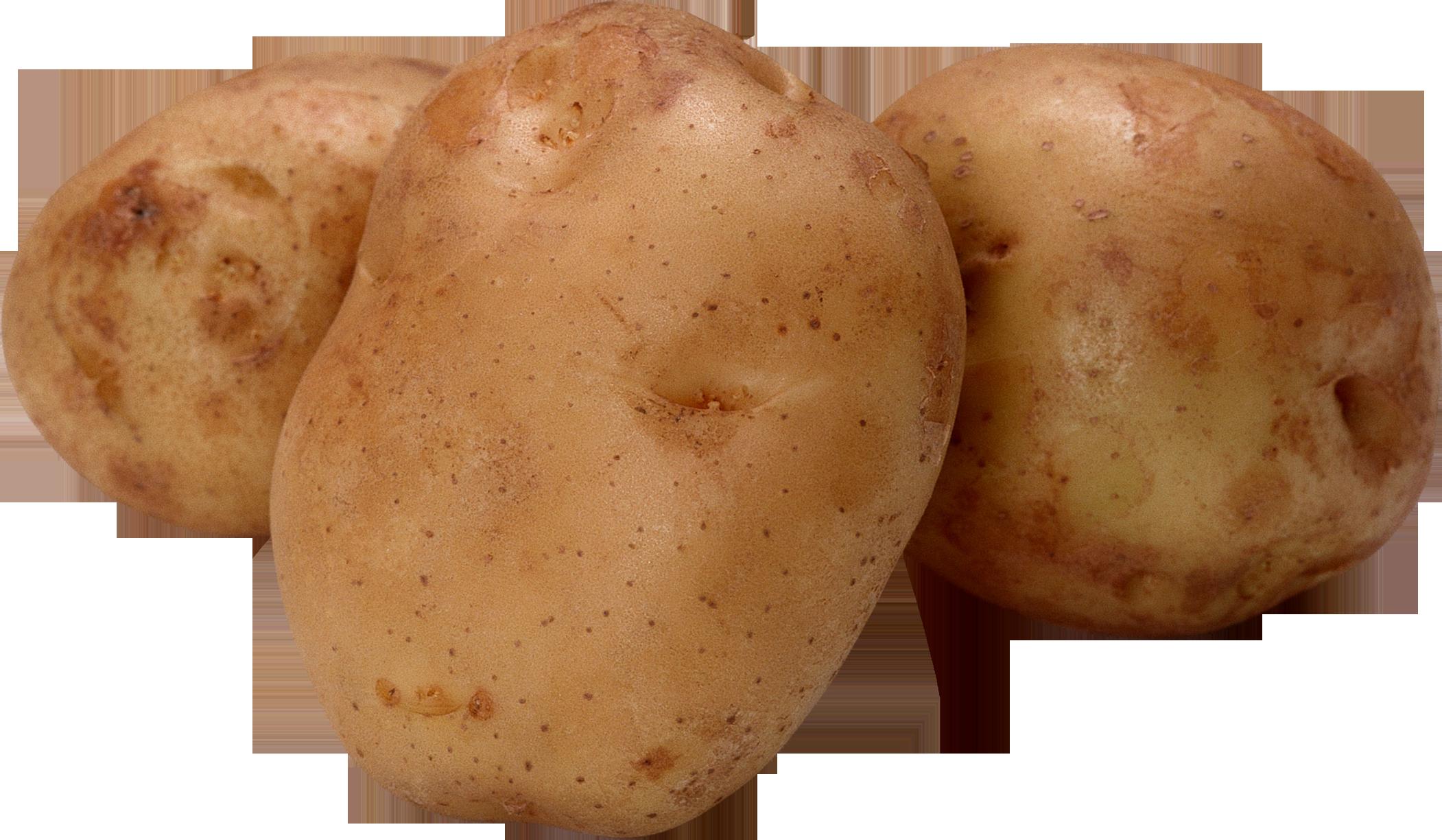 Clip art png images. Potato clipart transparent background