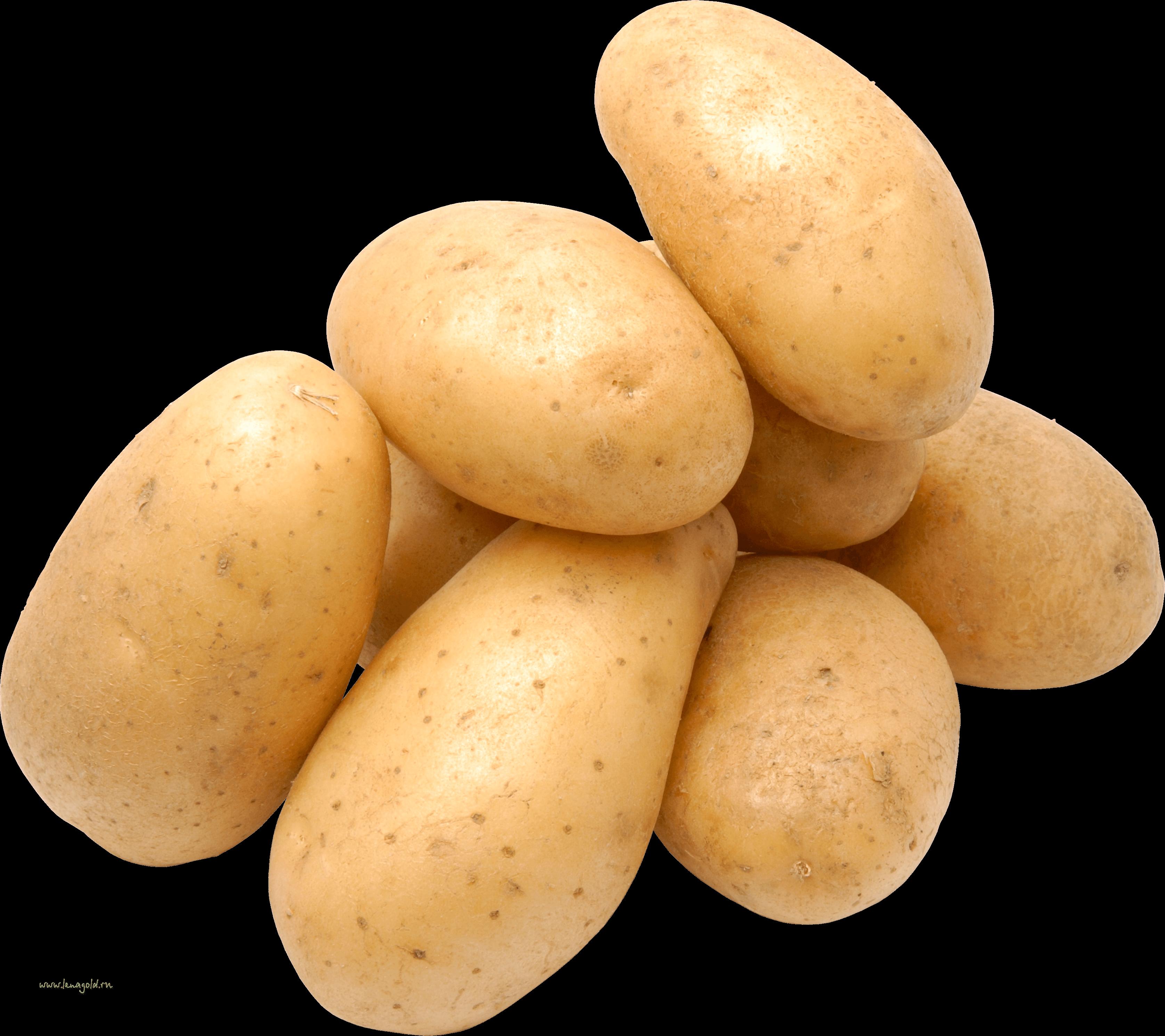 Download png images hq. Potato clipart twister