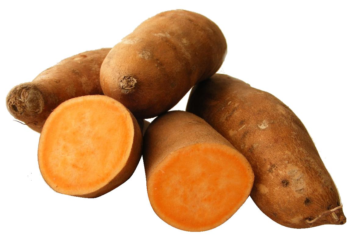 Png image purepng free. Potato clipart yam