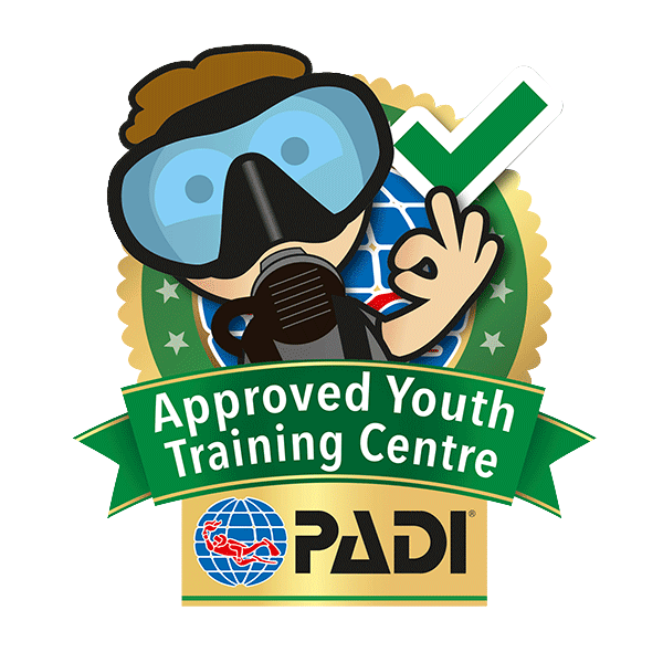 Professional clipart job training. Padi approved youth centre