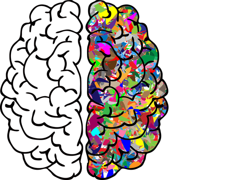 Psychology clipart brain function. Biopsychology ucsb career services